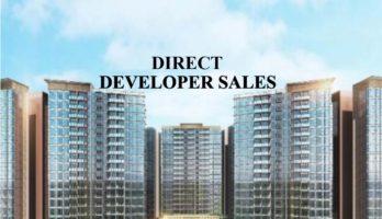 treasure-direct-developer